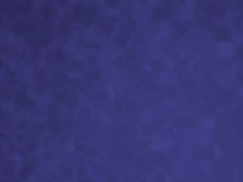 16″ x 20″ Blue Velvet Board